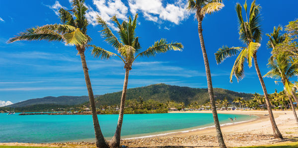 Southerly Luxury Cairns to Sydney  Ocean Cruise and luxury holiday experience
